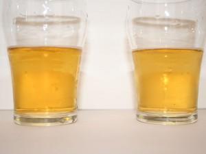 Miniem kleurverschil Goudhaantje (links) en Pitt bier (rechts)